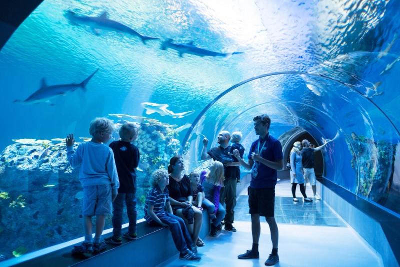 Spændende og sjove seværdigheder for børn og voksne i København